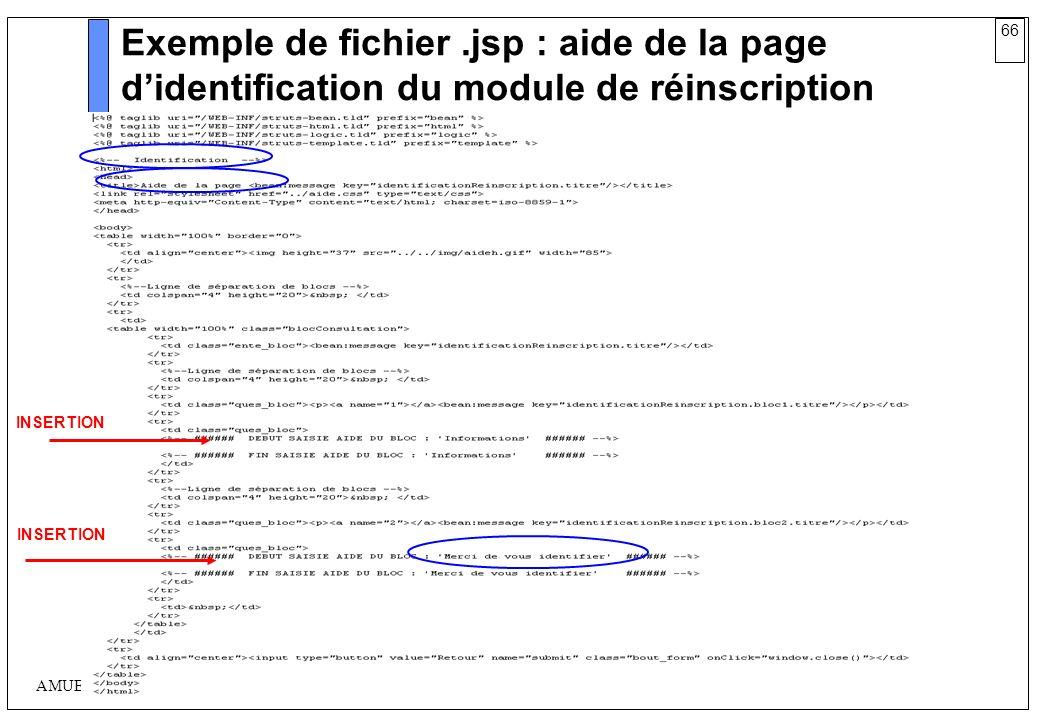 66 AMUE mars 2004 : Séminaire détaillé présentation Web Exemple de fichier.jsp : aide de la page didentification du module de réinscription INSERTION