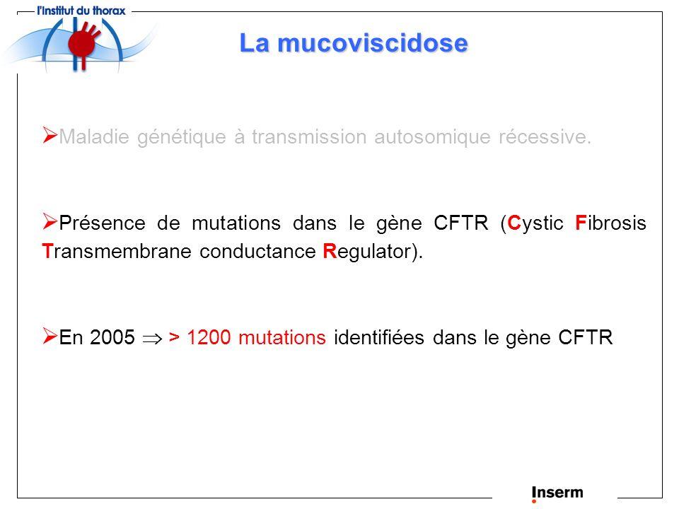 Cystic Fibrosis Transmembrane conductance Regulator Découverte du gène impliqué dans la mucoviscidose (gène CF, chr 7q31) 1989 Identification de la protéine (CFTR) et de ses mutations dans la maladie.