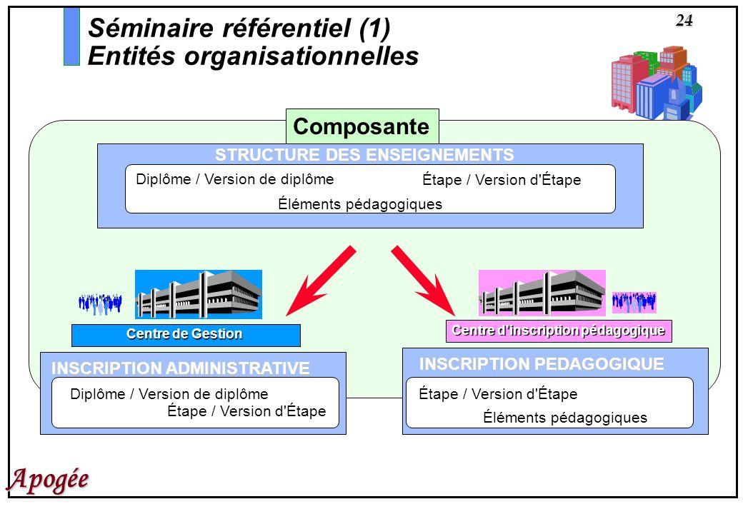 24 Apogée Séminaire référentiel (1) Entités organisationnelles INSCRIPTION PEDAGOGIQUE Étape / Version d'Étape Éléments pédagogiques Centre d'inscript