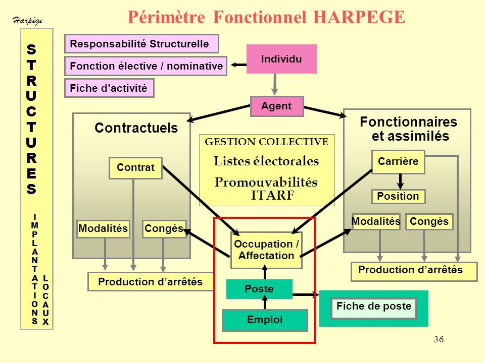 Harpège 36 Périmètre Fonctionnel HARPEGE Responsabilité Structurelle Fonction élective / nominative Fiche dactivité GESTION COLLECTIVE Listes électora