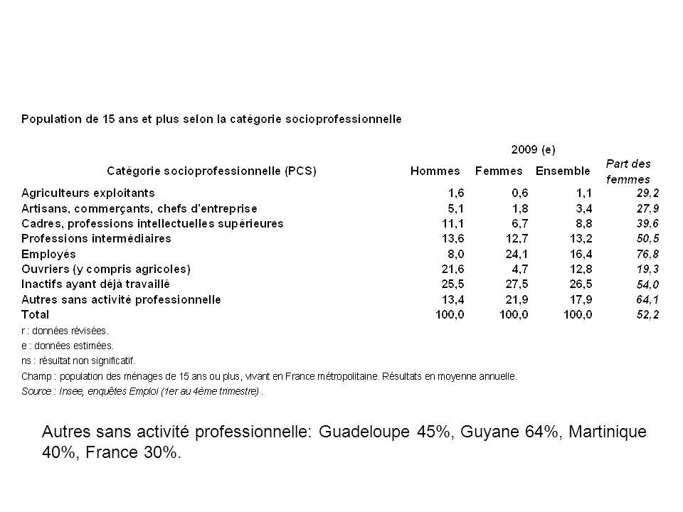 Autres sans activité professionnelle: Guadeloupe 45%, Guyane 64%, Martinique 40%, France 30%.