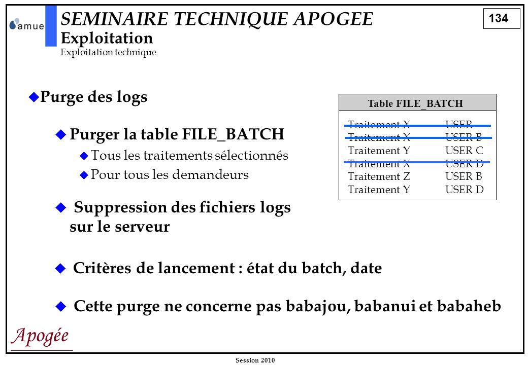 134 Apogée Session 2010 Purge des logs Table FILE_BATCH Traitement XUSER Traitement XUSER B Traitement YUSER C Traitement XUSER D Traitement ZUSER B T