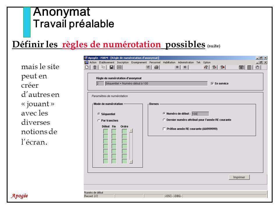 Apogée Anonymat Travail préalable Définir les règles de numérotation possibles (suite) mais le site peut en créer dautres en « jouant » avec les diverses notions de lécran.