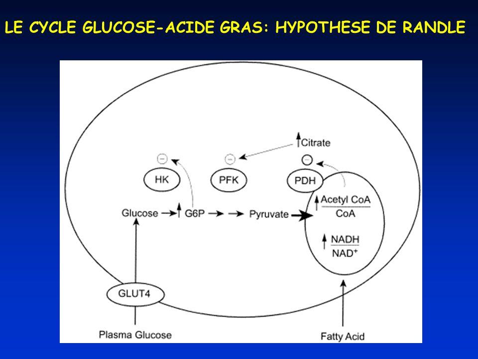 LE CYCLE GLUCOSE-ACIDE GRAS: HYPOTHESE DE RANDLE