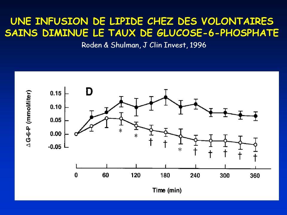 UNE INFUSION DE LIPIDE CHEZ DES VOLONTAIRES SAINS DIMINUE LE TAUX DE GLUCOSE-6-PHOSPHATE Roden & Shulman, J Clin Invest, 1996
