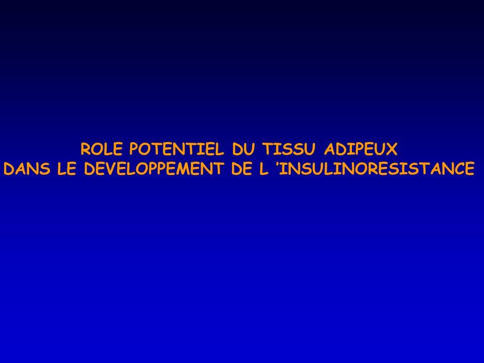 ROLE POTENTIEL DU TISSU ADIPEUX DANS LE DEVELOPPEMENT DE L INSULINORESISTANCE
