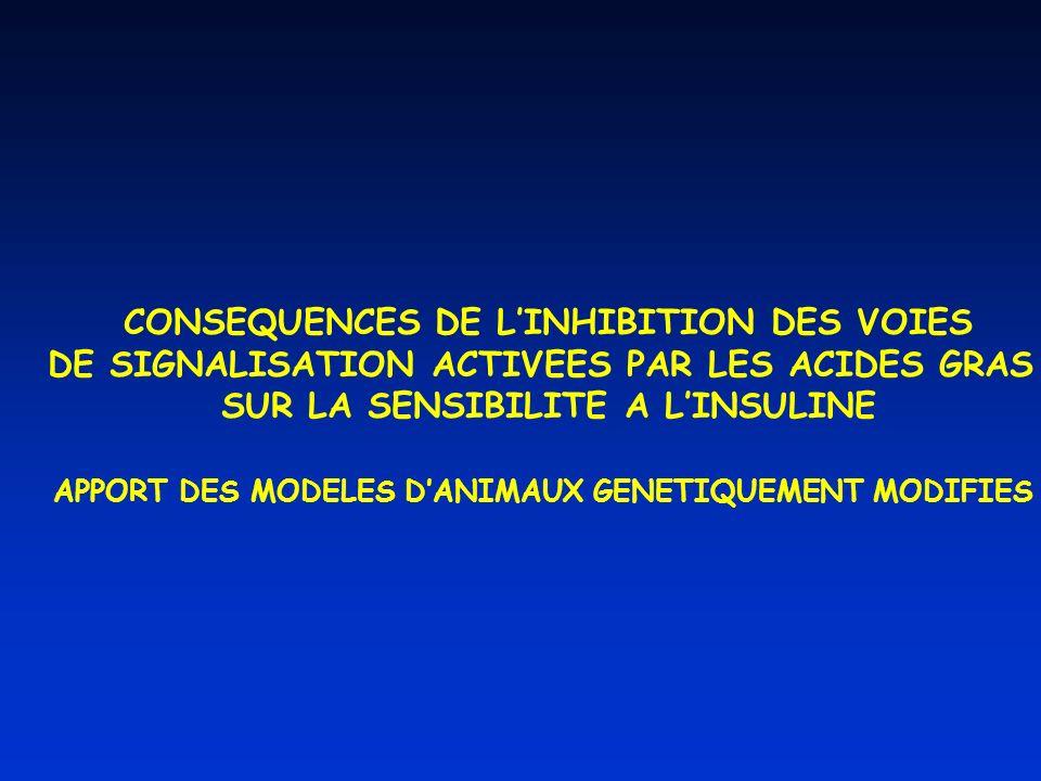 CONSEQUENCES DE LINHIBITION DES VOIES DE SIGNALISATION ACTIVEES PAR LES ACIDES GRAS SUR LA SENSIBILITE A LINSULINE APPORT DES MODELES DANIMAUX GENETIQUEMENT MODIFIES