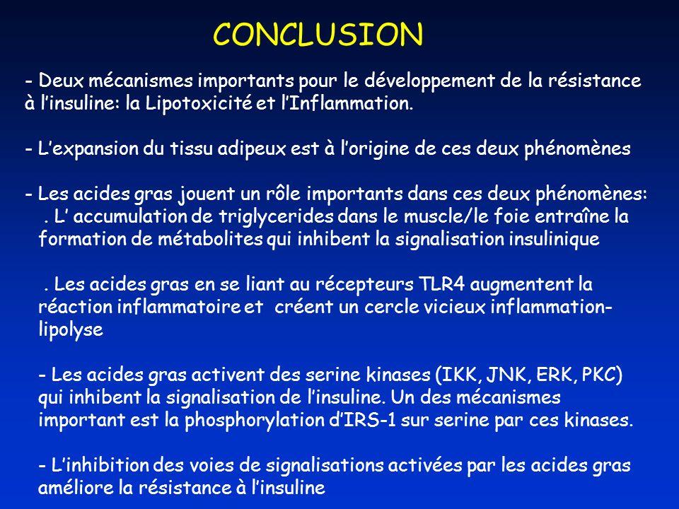 CONCLUSION - Deux mécanismes importants pour le développement de la résistance à linsuline: la Lipotoxicité et lInflammation. - Lexpansion du tissu ad