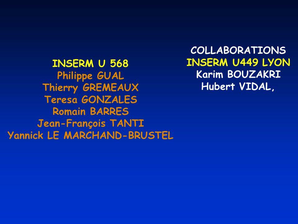 INSERM U 568 Philippe GUAL Thierry GREMEAUX Teresa GONZALES Romain BARRES Jean-François TANTI Yannick LE MARCHAND-BRUSTEL COLLABORATIONS INSERM U449 LYON Karim BOUZAKRI Hubert VIDAL,
