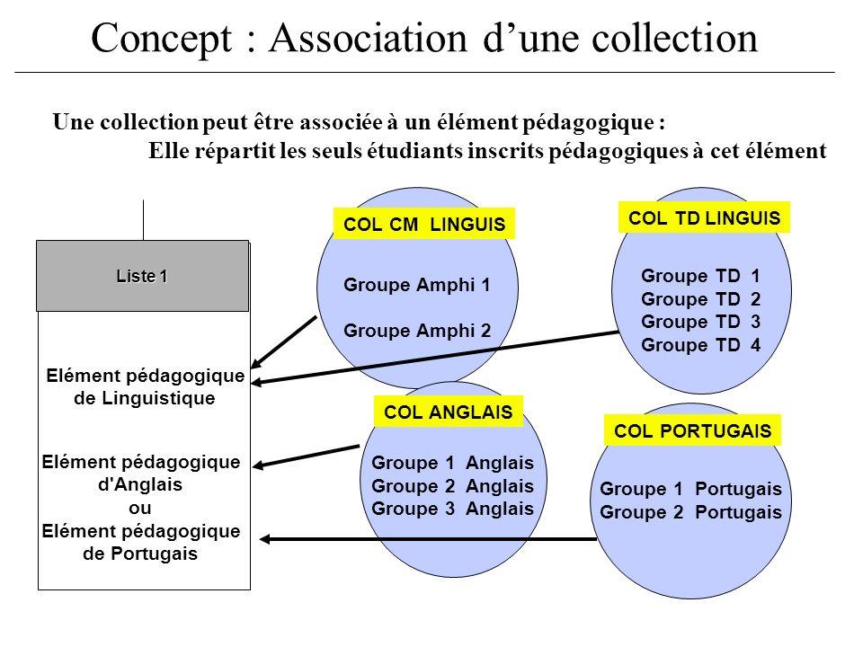 Groupe 1 Portugais Groupe 2 Portugais Concept : Association dune collection Groupe Amphi 1 Groupe Amphi 2 Groupe TD 1 Groupe TD 2 Groupe TD 3 Groupe T