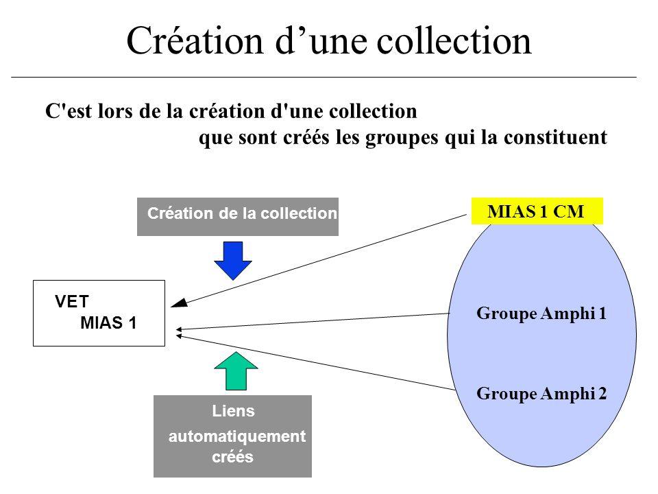Création dune collection C'est lors de la création d'une collection que sont créés les groupes qui la constituent Groupe Amphi 1 Groupe Amphi 2 MIAS 1