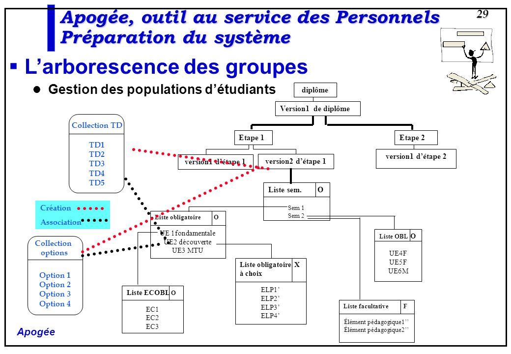 Apogée 29 Larborescence des groupes Gestion des populations détudiants diplôme Version1 de diplôme Etape 2 version1 détape 2 Etape 1 version1 détape 1