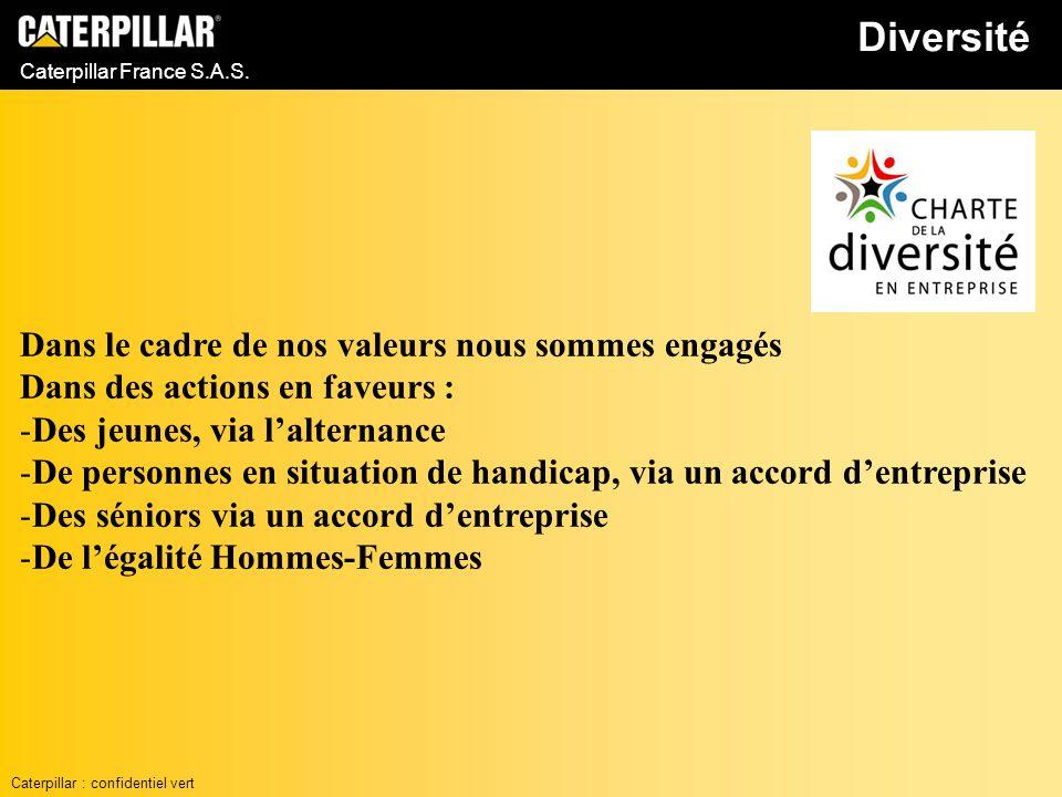Caterpillar France S.A.S. Diversité Caterpillar : confidentiel vert Dans le cadre de nos valeurs nous sommes engagés Dans des actions en faveurs : -De