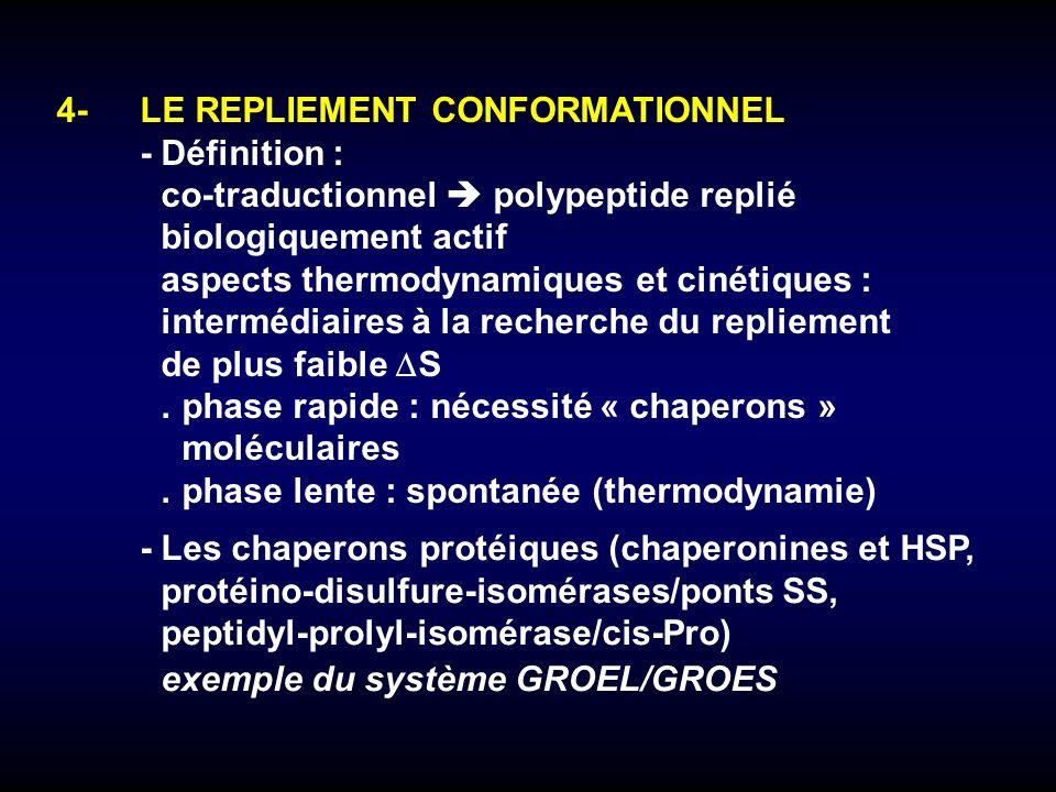 -Les chaperons protéiques (chaperonines et HSP, protéino-disulfure-isomérases/ponts SS, peptidyl-prolyl-isomérase/cis-Pro) exemple du système GROEL/GR