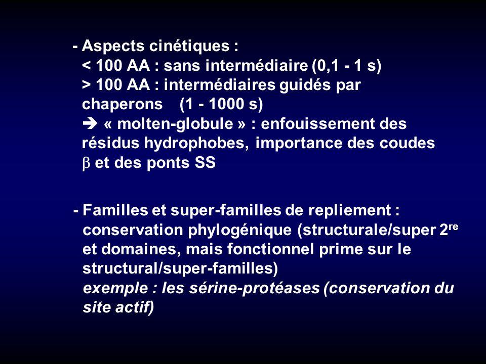 -Aspects cinétiques : < 100 AA : sans intermédiaire (0,1 - 1 s) > 100 AA : intermédiaires guidés par chaperons (1 - 1000 s) « molten-globule » : enfou