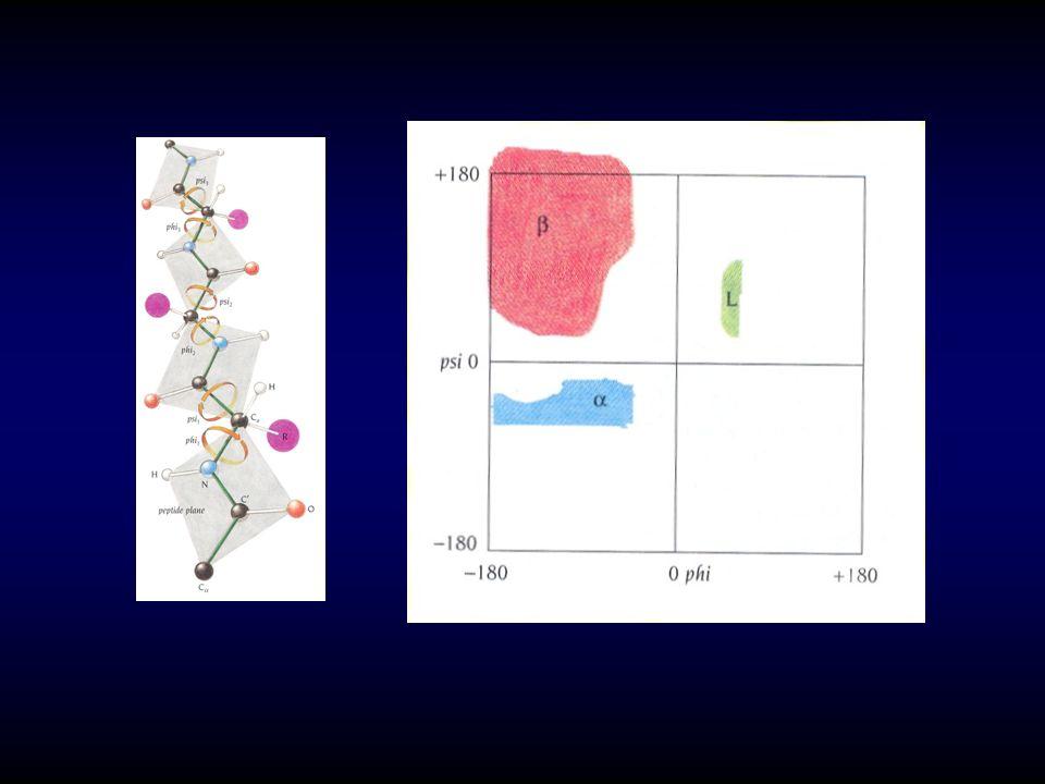 IV-STRUCTURE 3 RE 1-DÉFINITION -conformation privilégiée (thermodynamiquement stable : entropie minimale), aspects tridimensionnels/repliements multiples dont ceux du 2 re -relations structure/activité : adaptations conformationnelles (efficacité catalytique des enzymes, reconnaissances AG/AC et récepteur /ligand) / : (motif de Rossman/déshydrogénases à NAD+) « tonneau » /, « feuille torsadée », « sabot » / (enzymes glycolytiques : HK, TPI, PK) / + (tyrosyl-tRNA-synthétase) / + (carboxypeptidases : Zn 2+ )