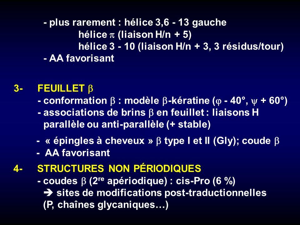 3-FEUILLET -conformation : modèle -kératine ( - 40°, + 60°) -associations de brins en feuillet : liaisons H parallèle ou anti-parallèle (+ stable) -«