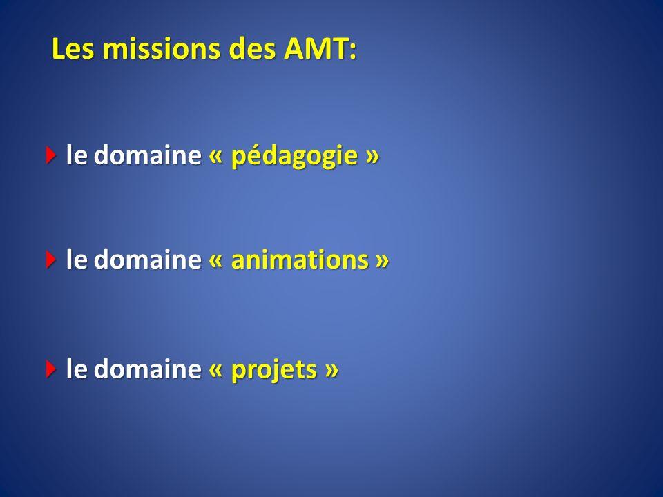 Les missions des AMT: le domaine « pédagogie » le domaine « pédagogie » le domaine « animations » le domaine « animations » le domaine « projets » le