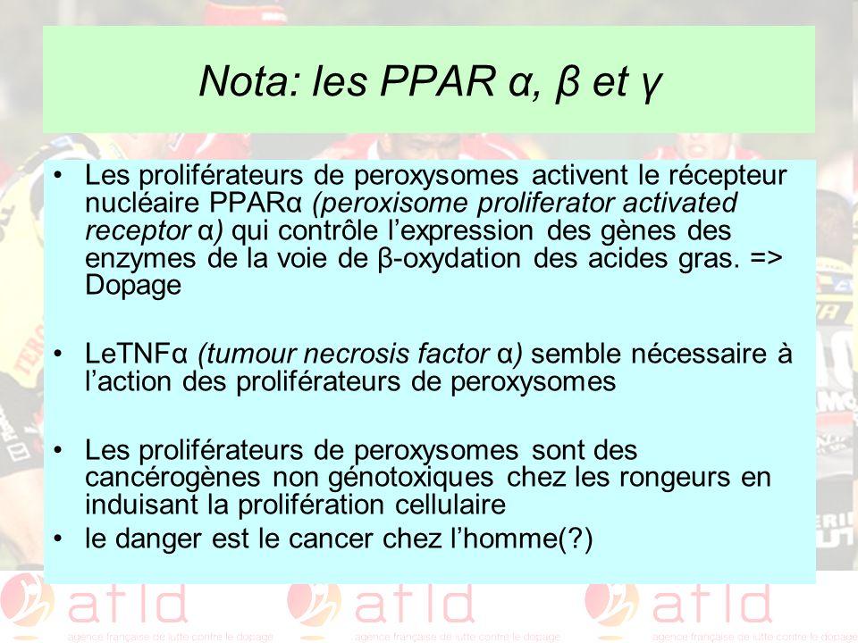 Nota: les PPAR α, β et γ Les proliférateurs de peroxysomes activent le récepteur nucléaire PPARα (peroxisome proliferator activated receptor α) qui co