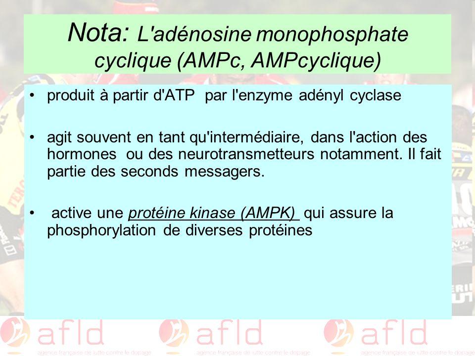 Nota: L'adénosine monophosphate cyclique (AMPc, AMPcyclique) produit à partir d'ATP par l'enzyme adényl cyclase agit souvent en tant qu'intermédiaire,
