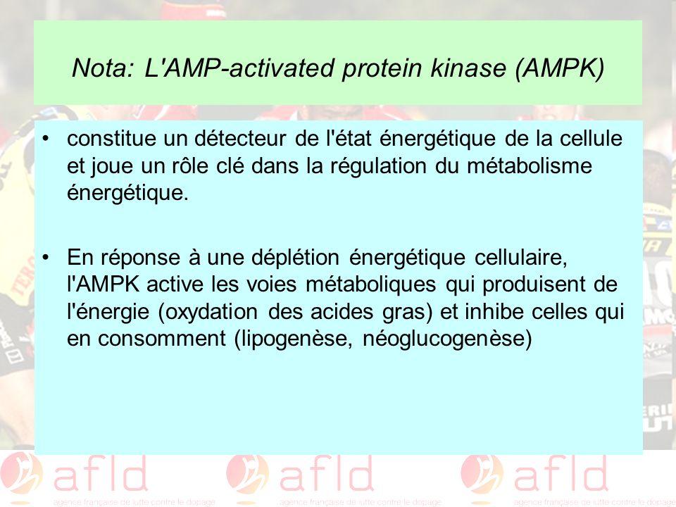Nota: L'AMP-activated protein kinase (AMPK) constitue un détecteur de l'état énergétique de la cellule et joue un rôle clé dans la régulation du métab