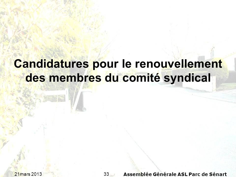 3321mars 2013Assemblée Générale ASL Parc de Sénart Candidatures pour le renouvellement des membres du comité syndical