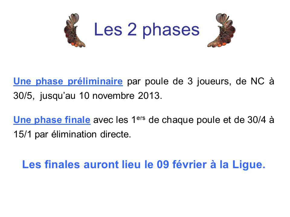 Les 2 phases Une phase préliminaire par poule de 3 joueurs, de NC à 30/5, jusquau 10 novembre 2013.