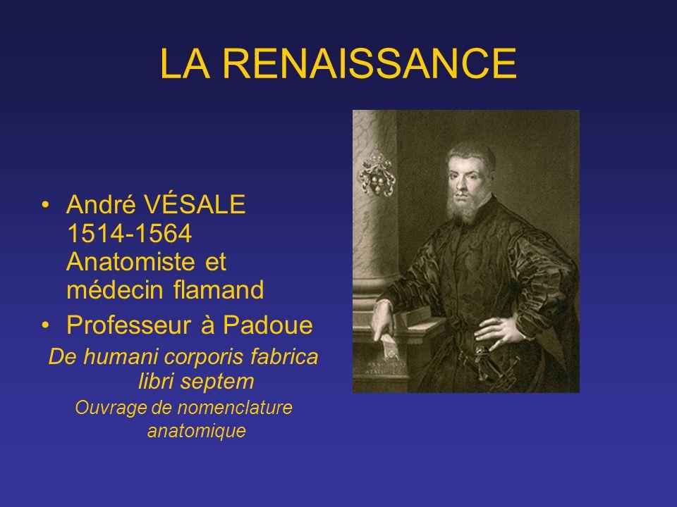 LA RENAISSANCE André VÉSALE 1514-1564 Anatomiste et médecin flamand Professeur à Padoue De humani corporis fabrica libri septem Ouvrage de nomenclatur