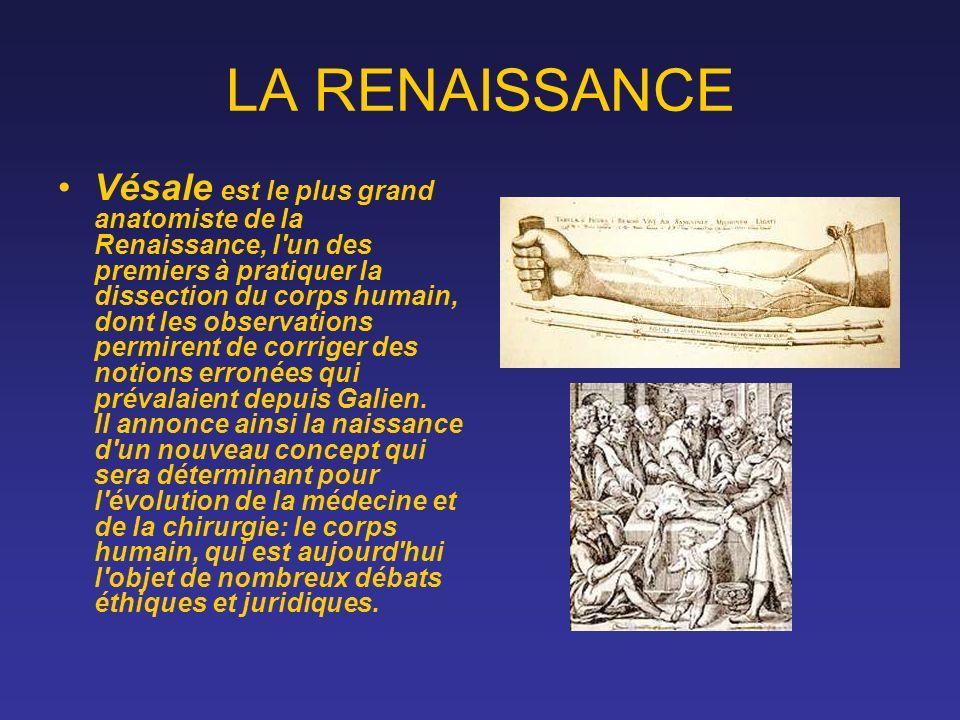 LA RENAISSANCE Vésale est le plus grand anatomiste de la Renaissance, l'un des premiers à pratiquer la dissection du corps humain, dont les observatio