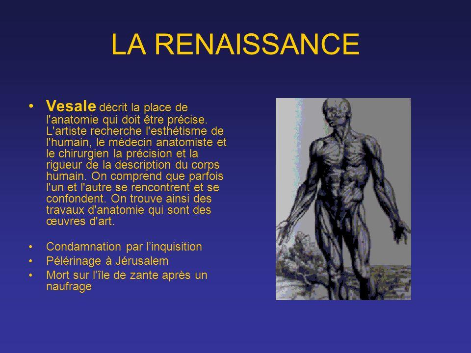 LA RENAISSANCE Vesale décrit la place de l'anatomie qui doit être précise. L'artiste recherche l'esthétisme de l'humain, le médecin anatomiste et le c