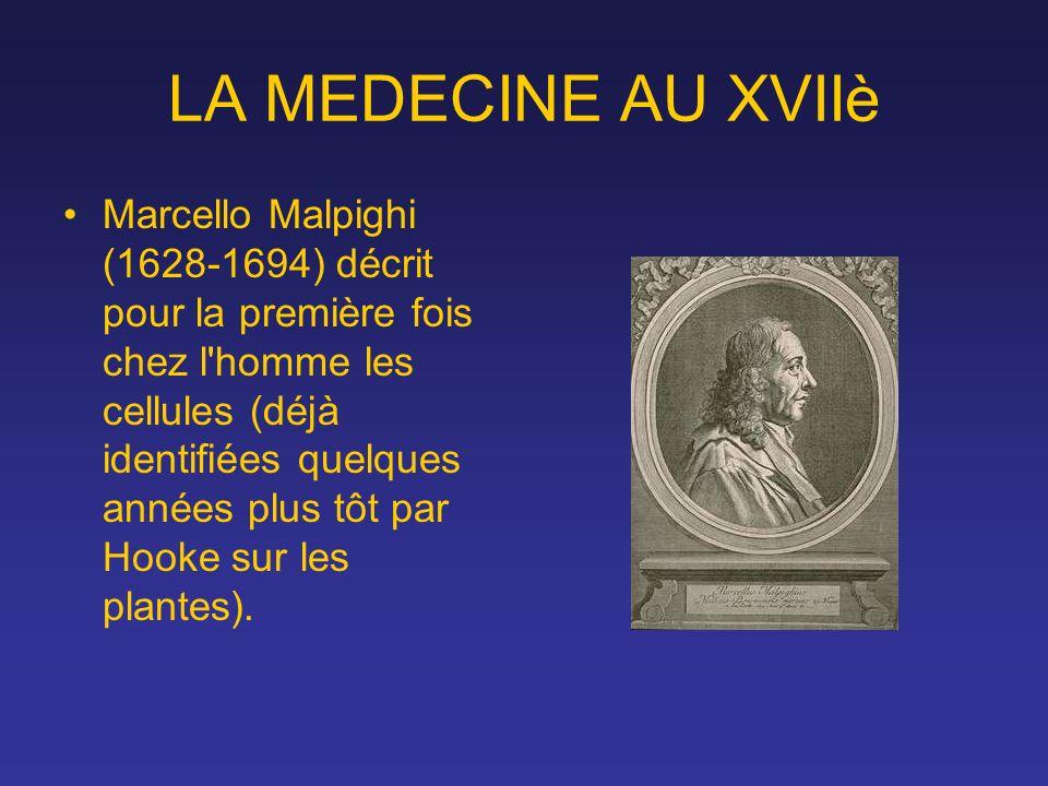LA MEDECINE AU XVIIè Marcello Malpighi (1628-1694) décrit pour la première fois chez l'homme les cellules (déjà identifiées quelques années plus tôt p