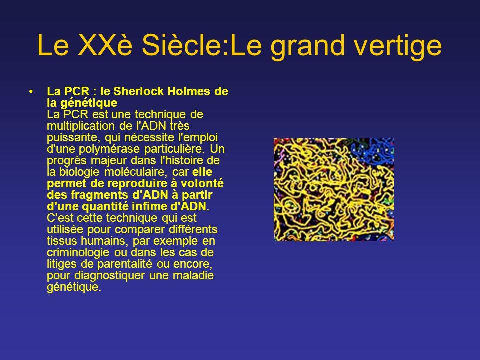 Le XXè Siècle:Le grand vertige La PCR : le Sherlock Holmes de la génétique La PCR est une technique de multiplication de l'ADN très puissante, qui néc