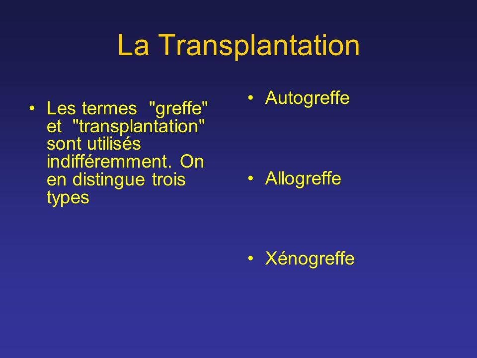 La Transplantation Les termes