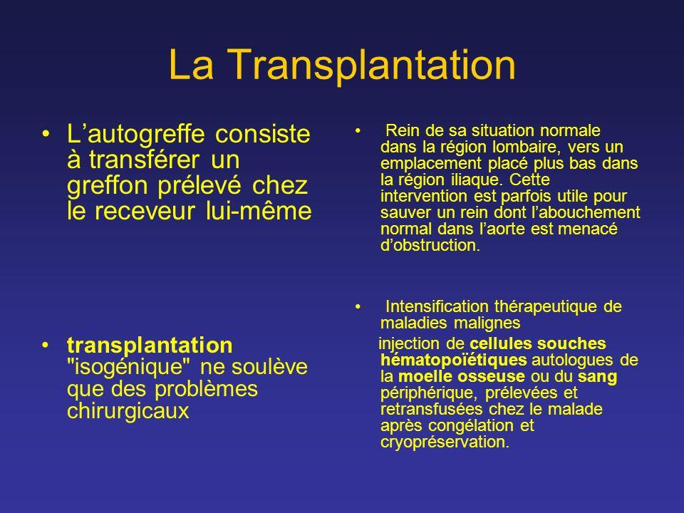 La Transplantation Lautogreffe consiste à transférer un greffon prélevé chez le receveur lui-même transplantation