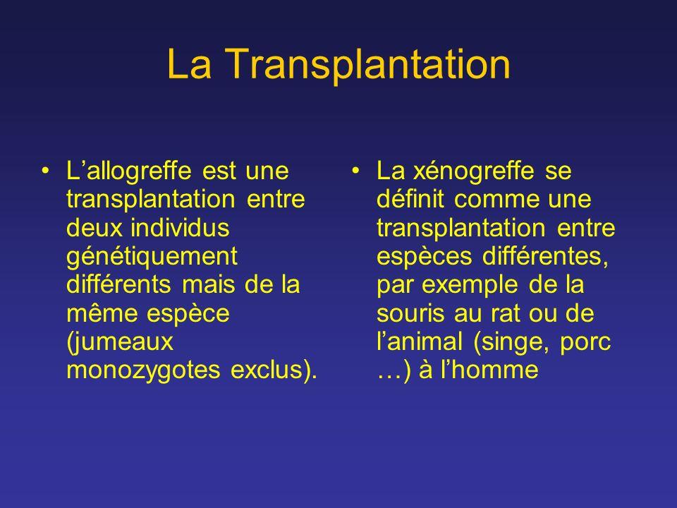 La Transplantation Lallogreffe est une transplantation entre deux individus génétiquement différents mais de la même espèce (jumeaux monozygotes exclu
