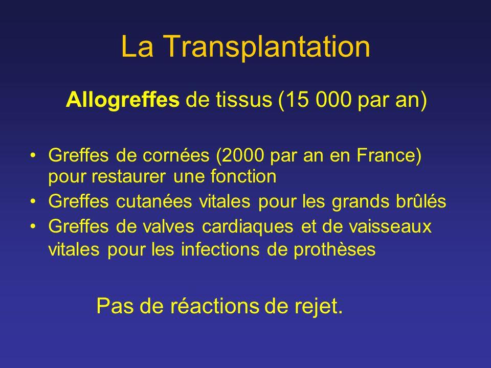 La Transplantation Allogreffes de tissus (15 000 par an) Greffes de cornées (2000 par an en France) pour restaurer une fonction Greffes cutanées vital