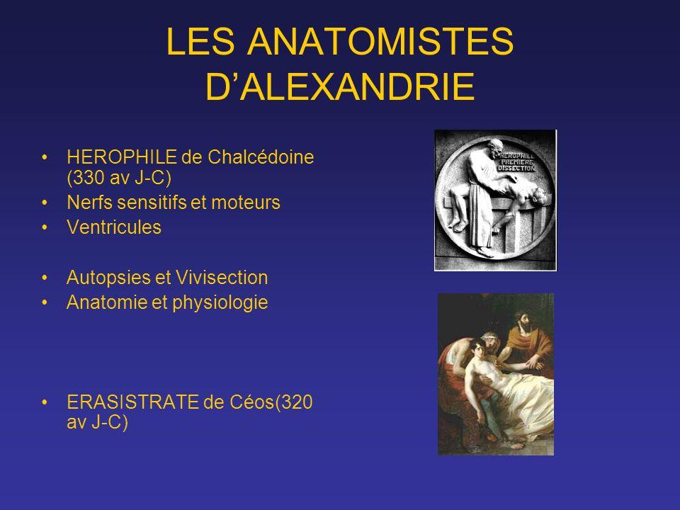 LES ANATOMISTES DALEXANDRIE HEROPHILE de Chalcédoine (330 av J-C) Nerfs sensitifs et moteurs Ventricules Autopsies et Vivisection Anatomie et physiolo