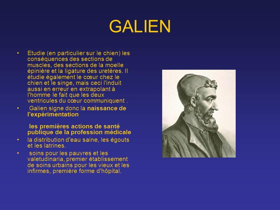 GALIEN Etudie (en particulier sur le chien) les conséquences des sections de muscles, des sections de la moelle épinière et la ligature des uretères.