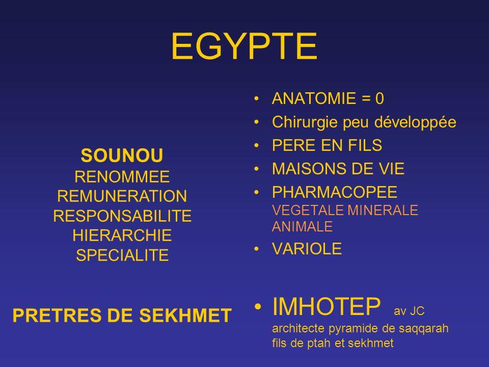 EGYPTE ANATOMIE = 0 Chirurgie peu développée PERE EN FILS MAISONS DE VIE PHARMACOPEE VEGETALE MINERALE ANIMALE VARIOLE IMHOTEP av JC architecte pyrami