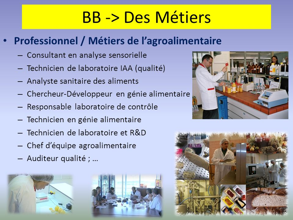 BB -> Des Métiers Professionnel / Métiers de lagroalimentaire – Consultant en analyse sensorielle – Technicien de laboratoire IAA (qualité) – Analyste