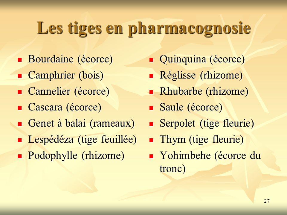 Les tiges en pharmacognosie Bourdaine (écorce) Bourdaine (écorce) Camphrier (bois) Camphrier (bois) Cannelier (écorce) Cannelier (écorce) Cascara (éco