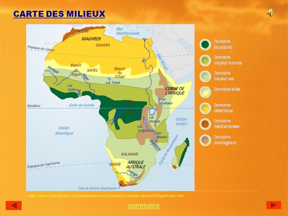 CARTE DES MILIEUX http://www.curiosphere.tv/Cartesinteractives/cartes/C4-colorier-climatsAfrique/carte.cfm sommaire