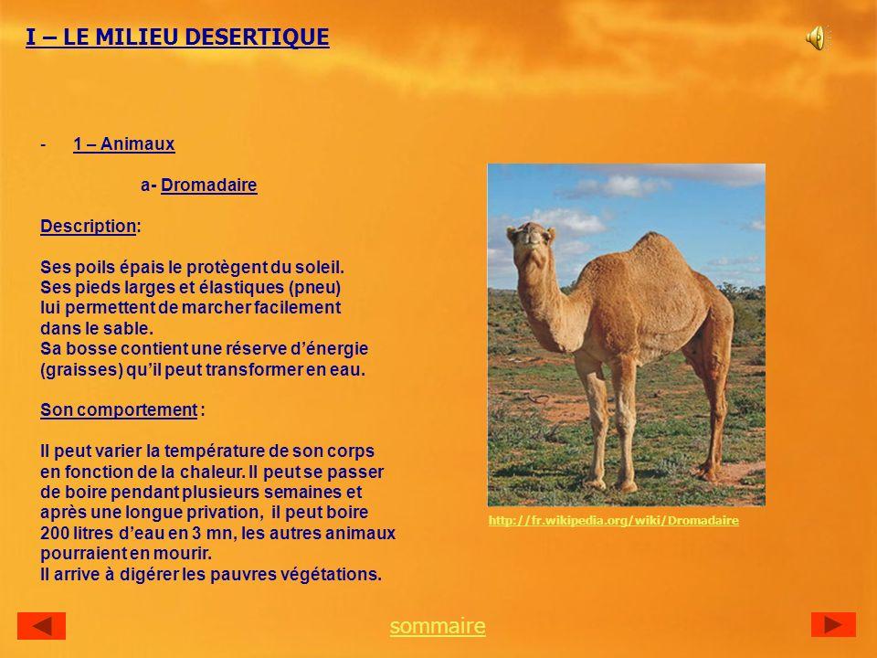 -1 – Animaux a- Dromadaire Description: Ses poils épais le protègent du soleil.