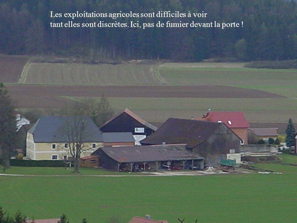 Les exploitations agricoles sont difficiles à voir tant elles sont discrètes. Ici, pas de fumier devant la porte !