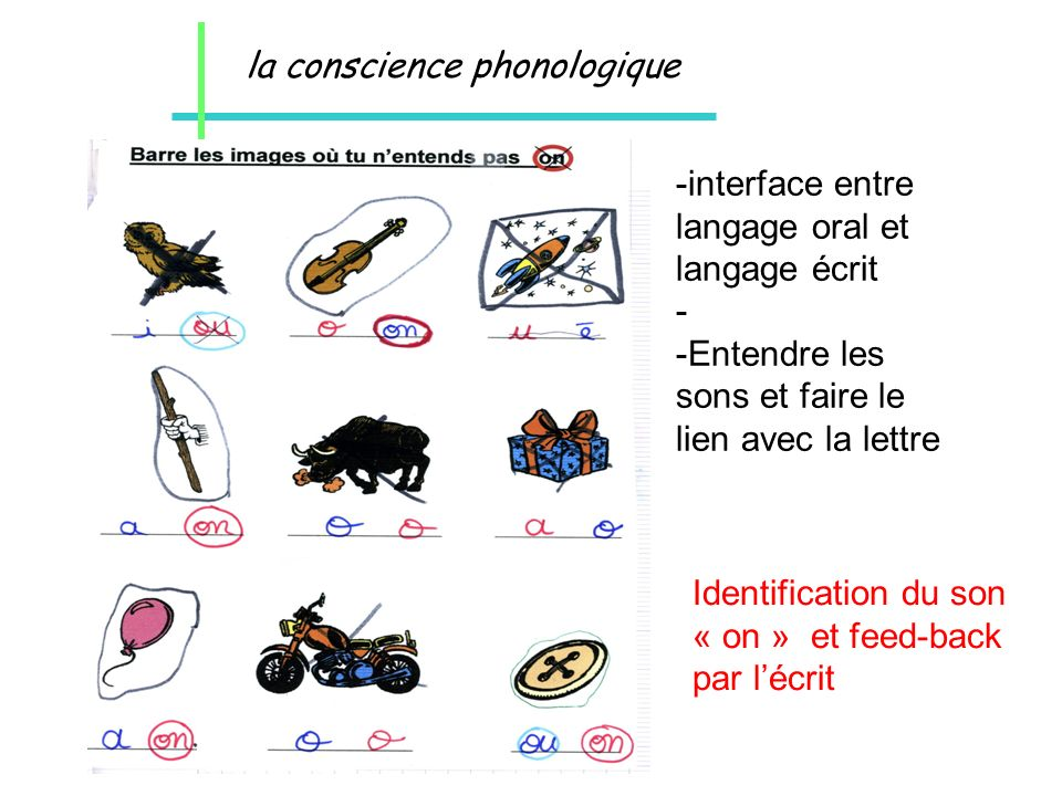 la conscience phonologique -interface entre langage oral et langage écrit - -Entendre les sons et faire le lien avec la lettre Identification du son «