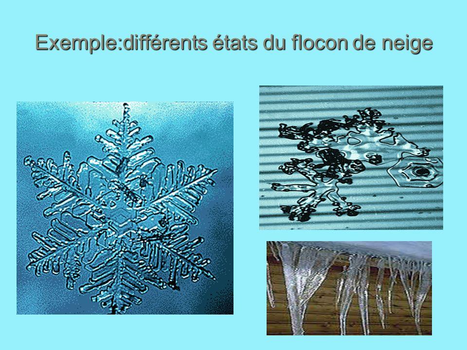 Exemple:différents états du flocon de neige