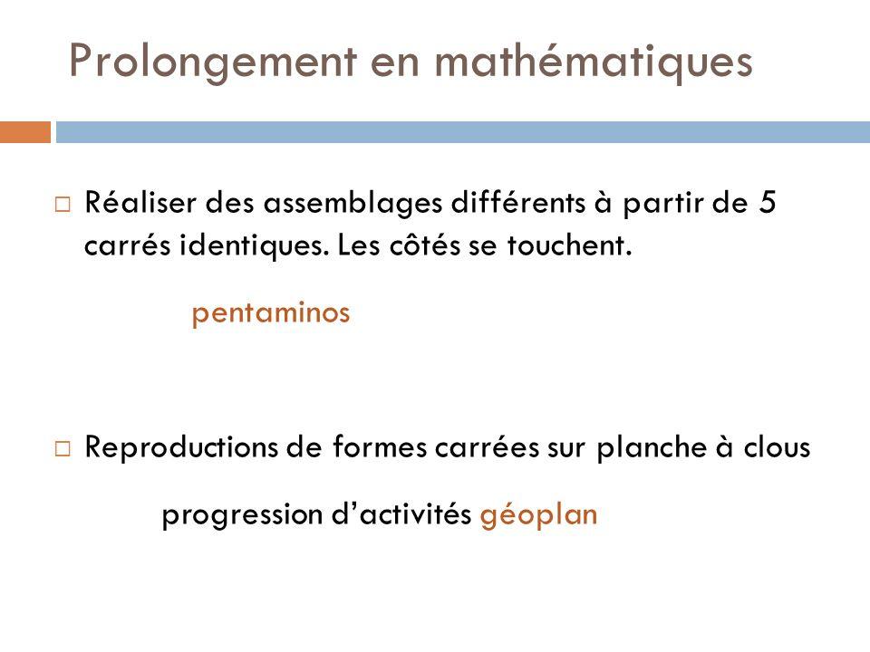 Prolongement en mathématiques Réaliser des assemblages différents à partir de 5 carrés identiques. Les côtés se touchent. pentaminos Reproductions de