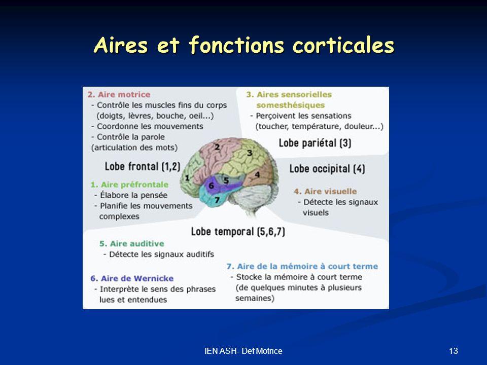13IEN ASH- Def Motrice Aires et fonctions corticales