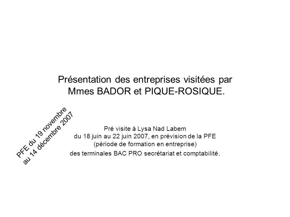 Présentation des entreprises visitées par Mmes BADOR et PIQUE-ROSIQUE. Pré visite à Lysa Nad Labem du 18 juin au 22 juin 2007, en prévision de la PFE
