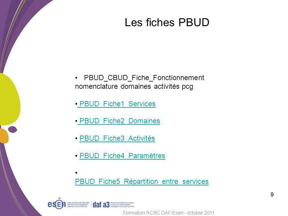 Module CBUD 10 Formation RCBC DAF/Esen - octobre 2011 Rappel : tous les budgets sont transférés de PBUD.